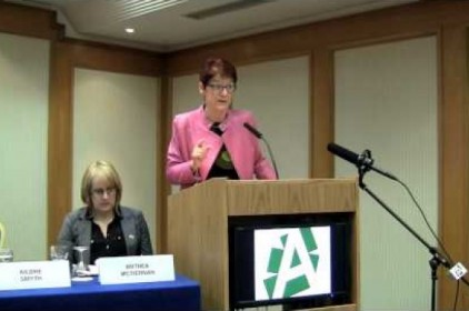 The panel on reproductive rights and Irish abortion law at EWTS 2013